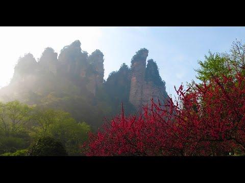 Zhangjiajie National Park : step-by-step