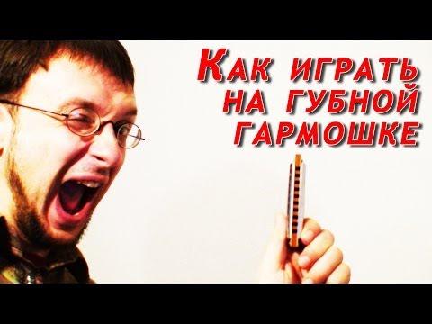 Самоучитель игры на губной гармошке для начинающих видео уроки