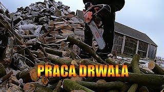 Praca Drwala w Gospodarstwie | Andrzej WielkiR
