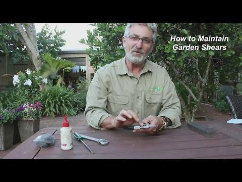How to Maintain Garden Shears