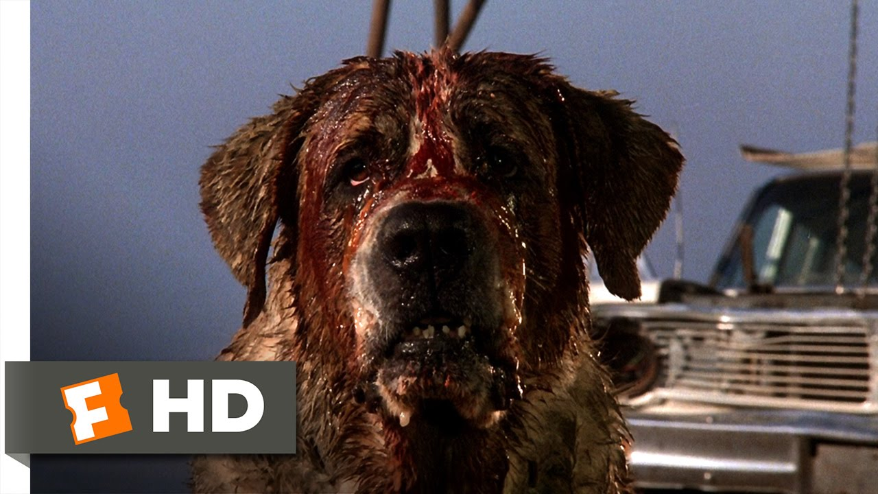 killer dog movie list