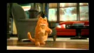 Kucing Garong VS Anjing Lebay1