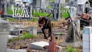LA ENVIDIA LOS MATA