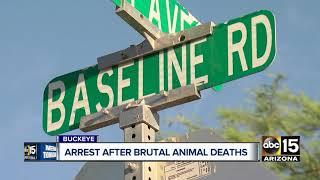 Man arrested after brutal animal deaths