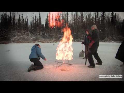Alaska's Bubbling Thermokarst Lakes - NASA Goddard Video