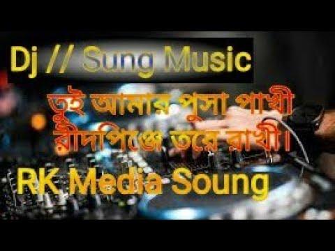Toi amar posha pakhi hride pinge tore rakhi/ ai boke tori bosobash (dj roky) new sung..