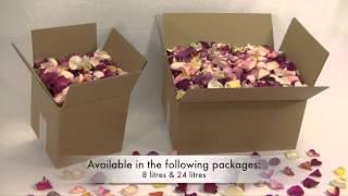 Freeze dried rose petals 'B-choice mixed'