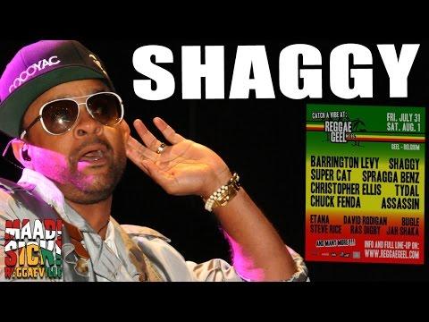 Shaggy  Oh Carolina @Reggae Geel 2015