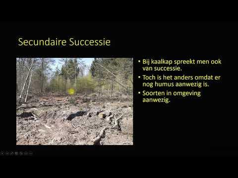 successie ecologie HAVO VWO bovenbouw
