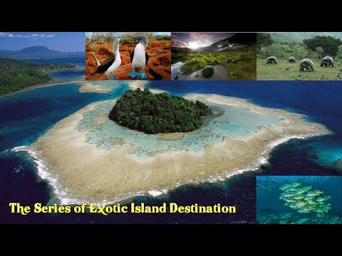 The Galápagos Islands, Inspire to Think Differently About The world