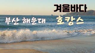 부산 해운대 겨울바다 호캉스(파도소리 볼륨조절~)