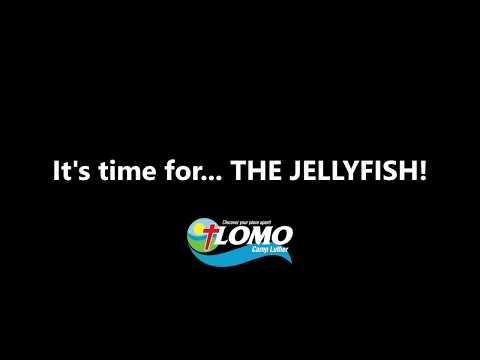 the-jellyfish