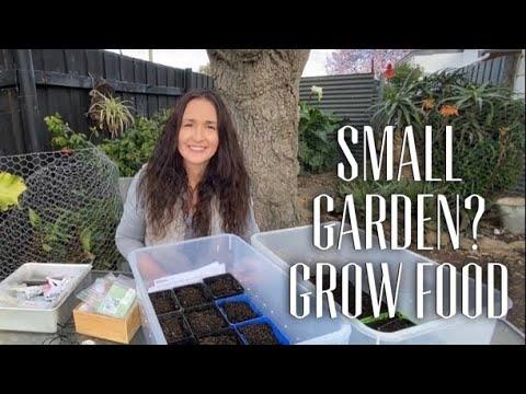 GROW FOOD IN A SMALL GARDEN