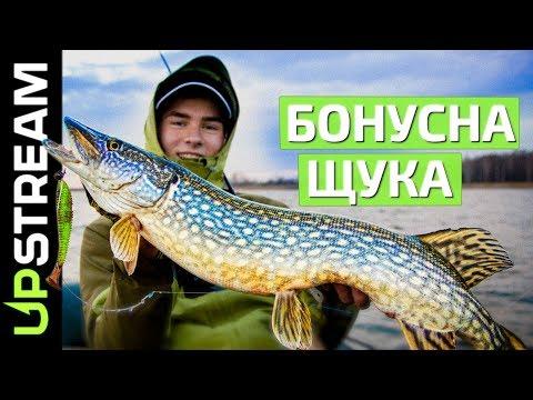 ВЕЛИКА ЩУКА озера Кричевичі / КРУПНАЯ ЩУКА озера Кричевичи | UPSTREAM
