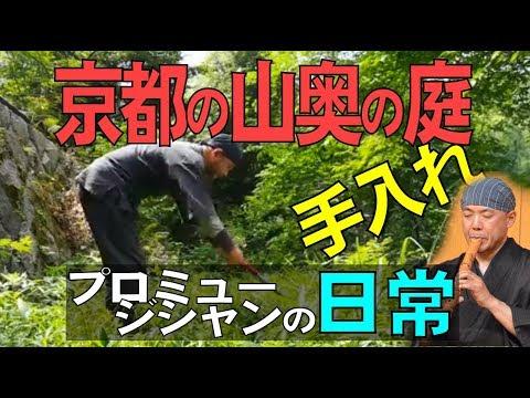 京都の山奥にある森の一軒家庭手入れ~プロミュージシャンの日常
