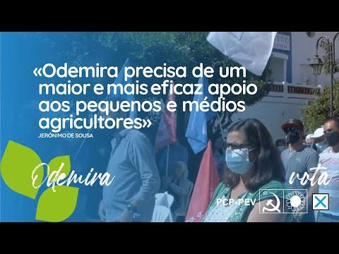 Odemira precisa de um maior e mais eficaz apoio aos pequenos e médios agricultores