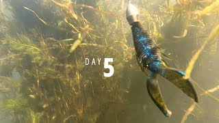 Day 5: Kyle Walters on Lake Guntersville