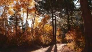 Herbert Grönemeyer - Ein Stück vom Himmel