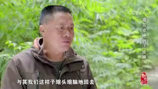 [中华优秀传统文化]艰苦卓绝的迁徙路| CCTV中文国际
