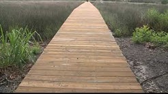 Jacksonville dock builder jailed
