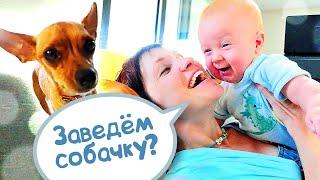 Маша Капуки и Карл в гостях – Домашние животные и Рум тур в Турции - Влог мамы