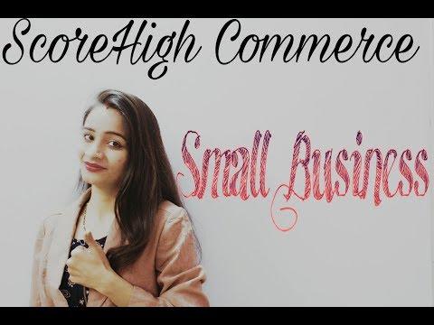 Small business I class 11th I Business Studies I chapter 9 I Part 1 | in Hindi हिंदी लघु व्यवसाय