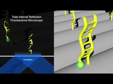 Discrete Molecular Imaging
