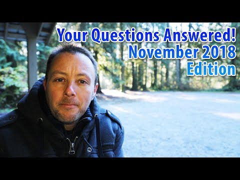 Your Horse Related Questions Answered! November 2018 Edition