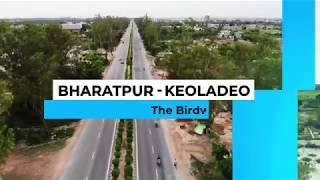Bharatpur Keoladeo National Park - A Birdwatcher's paradise