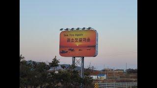 Gomso Port 설차례상 곰소젓갈 있는 곰소항 수산…