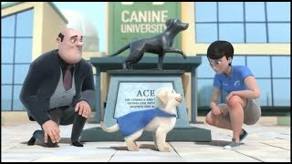 Pip | A Short Animated Film