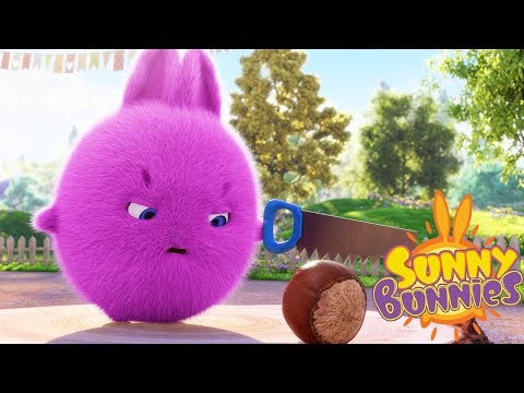 Cartoons for Children | SUNNY BUNNIES - HARD NUT | Funny Cartoons For Children