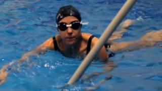 MEVIS - Школа плавания взрослых
