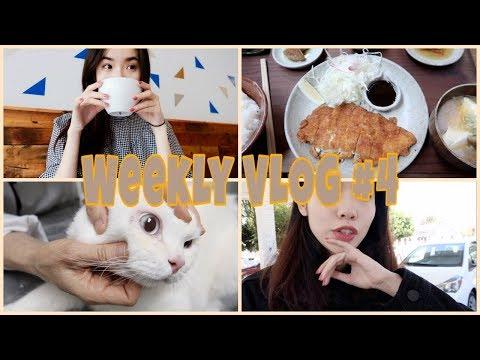 【Weekly Vlog#4】🍄tina和菇菇分别去医院   突然泪目了?? Sephora打折都买了啥  一直在吃吃吃呢!