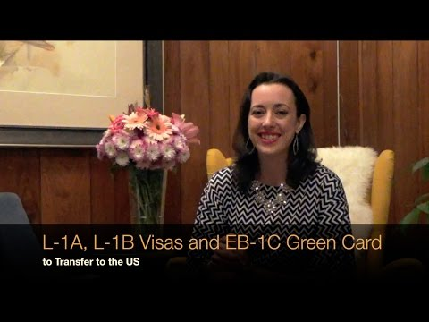 Understanding L-1A and L-1B Visas and EB-1C Green Card to Transfer to the US