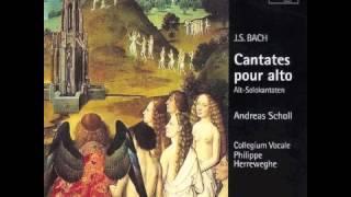 Bach   Cantate BWV 35 pour alto et orgue