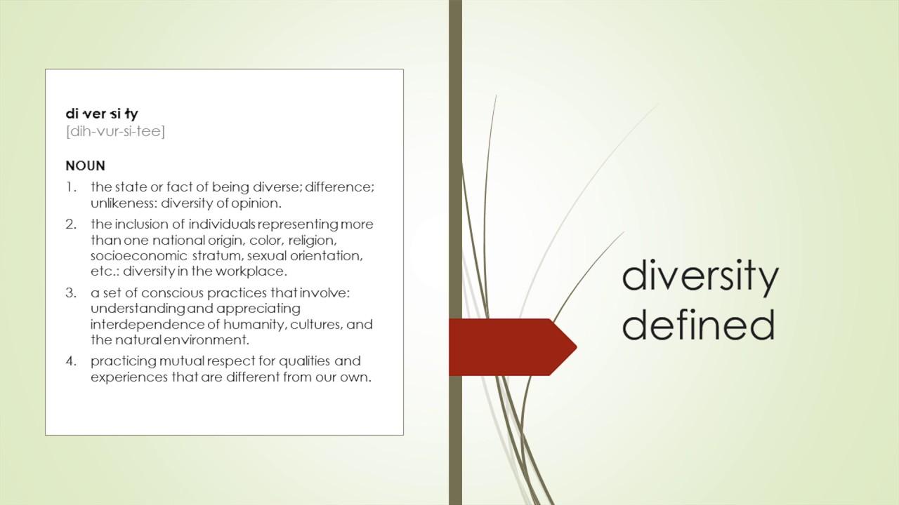 define diversity consciousness
