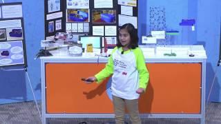 2017 Final Presentations - Gitanjali Rao