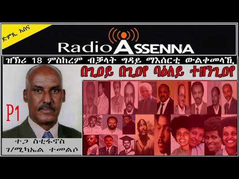 Voice of Assenna: ዝርርብ ምስ ተጋ ስቲፋኖስ ግዳይ ማእስርቲ ህግደፍ ብ ኣጋጣሚ 18 መስከረም