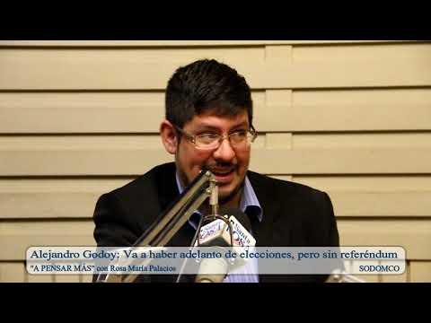 Alejandro Godoy: Va a haber adelanto de elecciones, pero sin referéndum