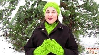 Вязание шапочки, шарфа и варежек узором коса на 12 петлях.  Часть 2: варежки