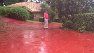 Llovió tanto, y encima me cai, [http://blog.albertmariagil.com/] Thumbnail