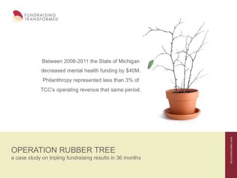 Operation Rubber Tree: a Case Study on Tripling Fundraising Results in 36 Months