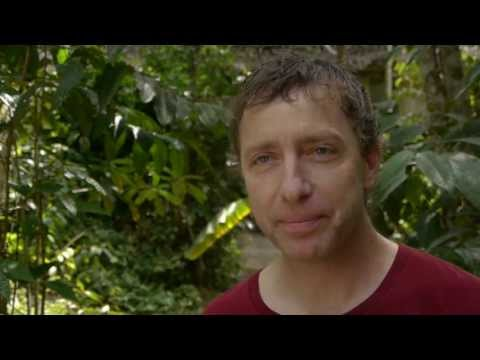 Jeremy Narby at the Temple of the Way of Light Ayahuasca Retreat Center