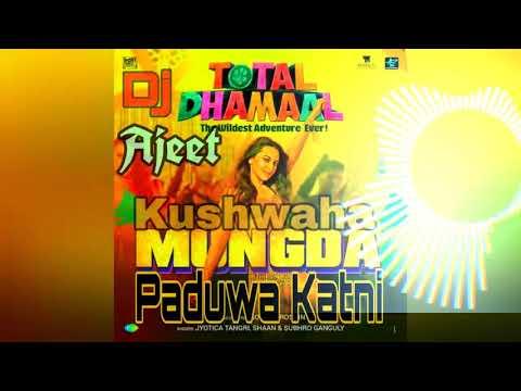 Mungda  Total  Dhamal  DJ Ajeet Kushwaha  Paduwa Katni