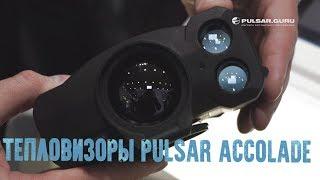 Тепловизионный бинокуляр Pulsar Accolade
