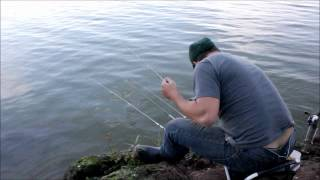Represa Billings Pescaria no Nosso Lar