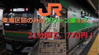 【駅ナンバリング対応!?】東海区間のみでE233系に乗ってきた【JR東海最長片道きっぷの旅#2】