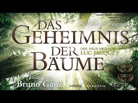 DAS GEHEIMNIS DER BÄUME - WINNER Cosmic Angel 2014 - Audience Choice & Grande Jury Prize - Trailer
