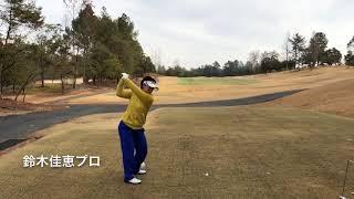 鈴木佳恵プロ、田中浩正プロのスイングです.